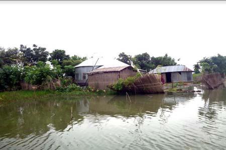 ফরিদপুরে ৫০ টি গ্রাম প্লাবিত, ৫৮টি বসতঘর নদীগর্ভে বিলীন