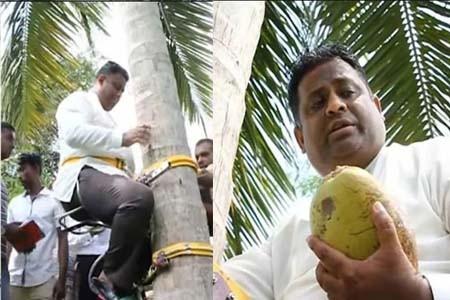 নারকেলমন্ত্রী অরুণদিকা ফার্নান্দো