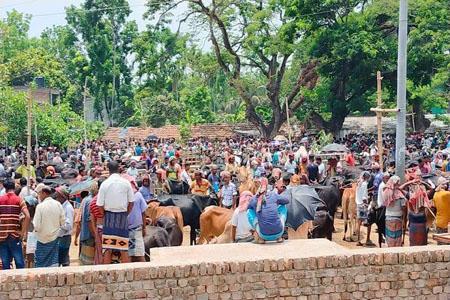 https://thenewse.com/wp-content/uploads/Shorsha-Seven-mile-cattle-market.jpg