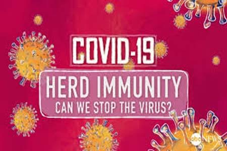 ভাইরাস প্রতিরোধে হার্ড ইমিউনিটি, করোনাভাইরাস প্রতিরোধে হার্ড ইমিউনিটি, করোনাভাইরাস প্রতিরোধ, হার্ড ইমিউনিটি; , herd immunity protect coronavirus, herd immunity, protect coronavirus;