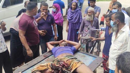 শার্শায় সড়ক দূঘটনায় আলমসাধু চালক আহত