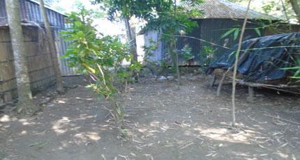 কামারখালীতে কেনা জমি নিয়ে অশান্তি